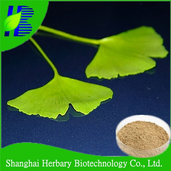 Manufacturer Supply medicinal herbal plant extract, ginkgo flavone glycosides