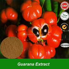 Pure Natural Guarana Seed Extract Powder, Guarana Powder, Guarana Extract for Weight Loss with High Quality