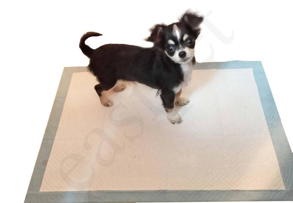 Super Absorbent Puppy Toilet Training Pads 60cm x 45cm Dog Cat Wee