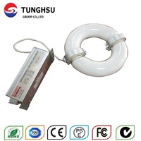 Buy LCL-FL009 200W Low frequency Induction lamp in China on ...