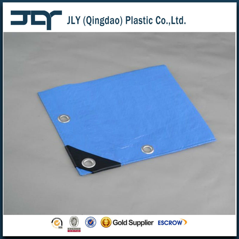 Plastic Sheet With PP Rope Home/Farm/Garden Use PE Collecting Tarpaulin