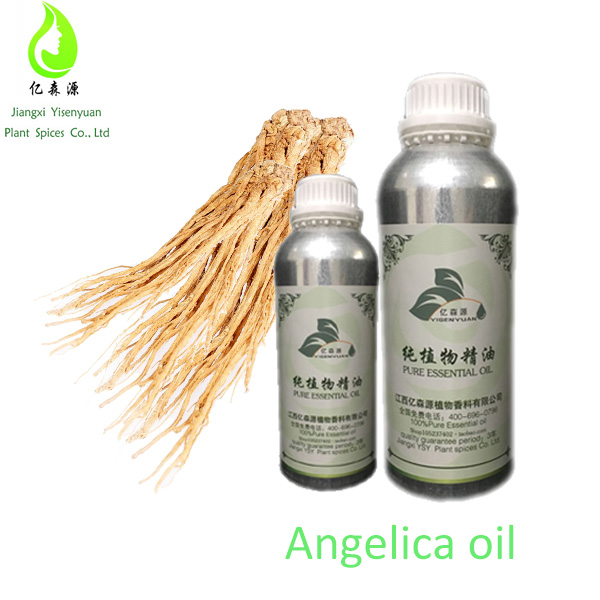 Female Ginseng Angelica Root Oil One Chinese Medicine Essential Oil