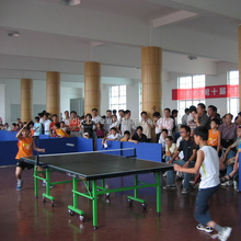 Top Grade Red Rollaway Table Tennis Table for sale