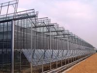 venlo glass greenhouse for flower pvc multi garden cloche greenhouse hydroponics grow tent kits