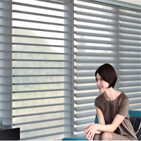 Health and energy saving Sheer curtain Shangri-La Blinds with electric system