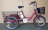 20inch electric trike for cargos / adults electric bike three wheels /Disc brake electric bicycle