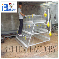 BETTER FACTORY chicken egg layer cages