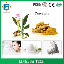 Good Quality Sell Well Turmeric Root Extract Powder 95% Curcumin