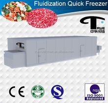 Stainless Steel Belt iqf Tunnel Freezer