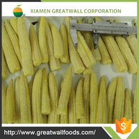 wholesale chinese frozen baby corn
