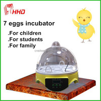 Full Automatic 7 Eggs Cheap parrot eggs and birds For Sale Household