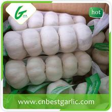 Chinese pink garlic brands