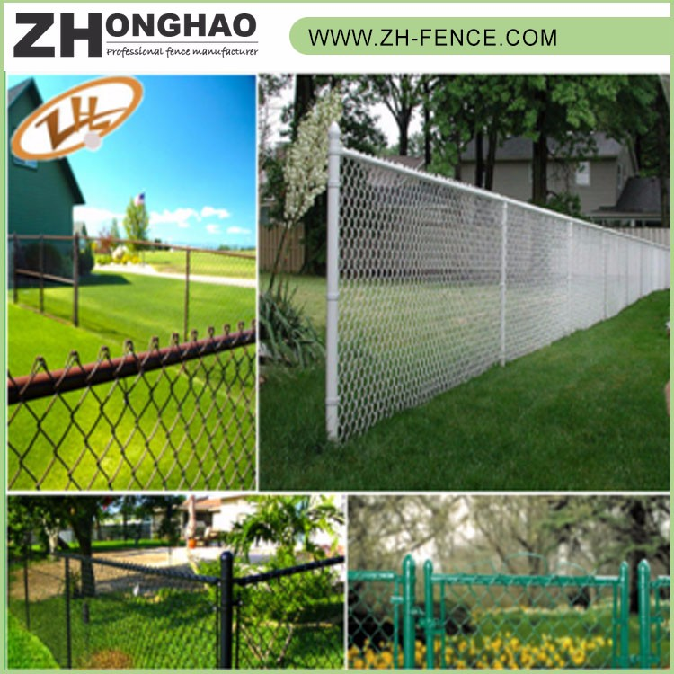 China professional manufacture chain link dog kennel lowes