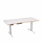 Kid2Youth TCT DWS-3X Home Office Sit Stand Desk Electric Height Adjustable Desk