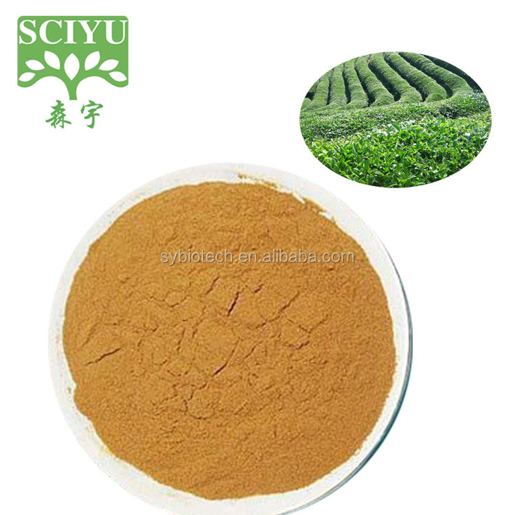 Green Tea Extract Polyphenol 90% Catechins 70% EGCG 40% Catechins
