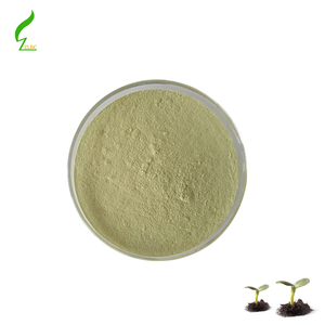 Folic acid/Vitamin B9 professional supplier