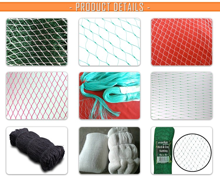 Fine craftsmanship Anti bird protection net