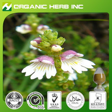 High quality Flavonoids Eyebright Extract powder | Eyebright Extract