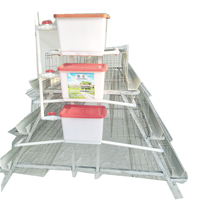 Poultry Farming Laying hens Layer Chicken Cage