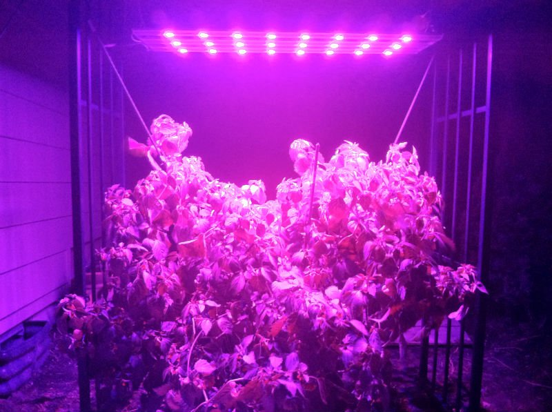 EnviroLux LED Grow Light