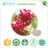 Botanical extracts Fine powder Schisandra berries extract