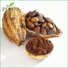 High quality natural pure cocoa powder with free sample
