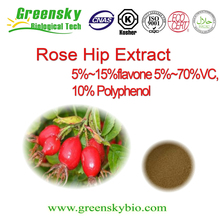 Top Quality Natural Plant Extract Rose Hip Extract