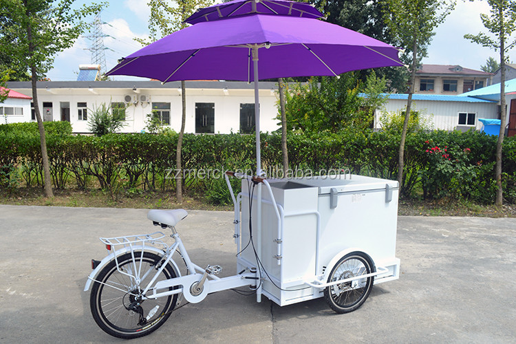 Good Refrigerated Worked Cold Drinks Icecream Business Bike