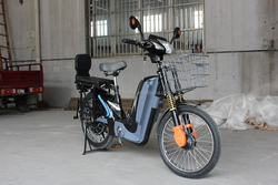 Chinese electric motor,bike, scooter SRW