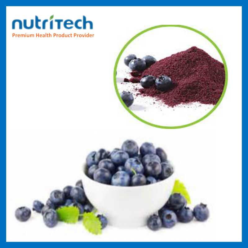 25% Anthocyandins 100% Natural Powder From Dried Blueberry