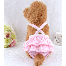 Wholesale Pet Products Spring&summer Dog Physical Pants Pet Apparel