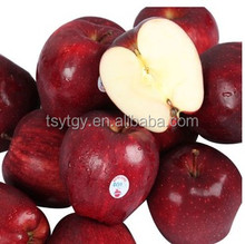 2016 fresh huaniu apple fruit with high quality for sale