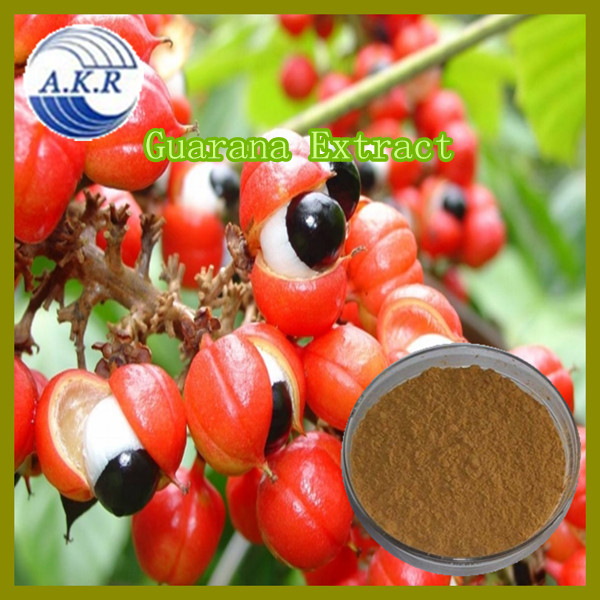Hot Selling Functional Beverages Ingredients Natural Guarana Seed Extarct,