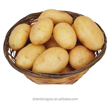 China factory supplies dried fresh potato for export