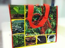 Lamination PP Woven photo print bag