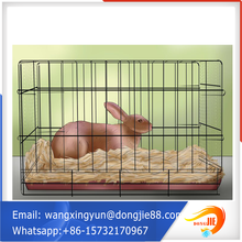 durable 80years battery broiler chicken rabbit cage for farming