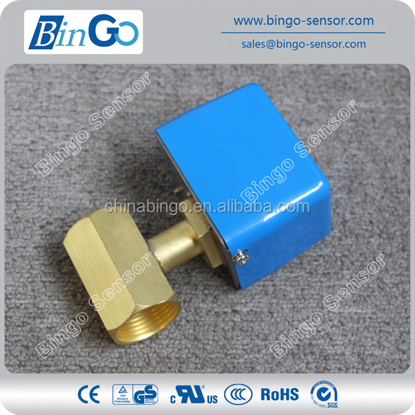 Magnetic reed paddle type flow switch for water pump
