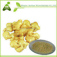 ginger coffee leptin green coffee 1000 gold exclus