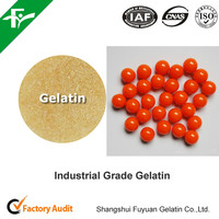 Buy Technical Gelatin for Paintball Bullet