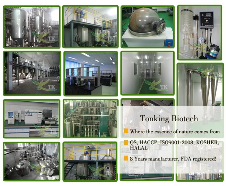Tonnking factory Directly Supply Sucralose powder