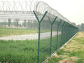 China low price products ornamental fence alibaba china supplier wholesales