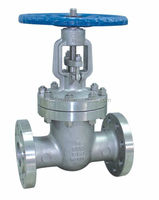 ANSI 165. B API600 Cast Steel Gate Valve