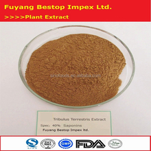 Ji Li Manufactory Supply Nutritional Supplements Tribulus Terrestris Extract Saponins 20%-98%