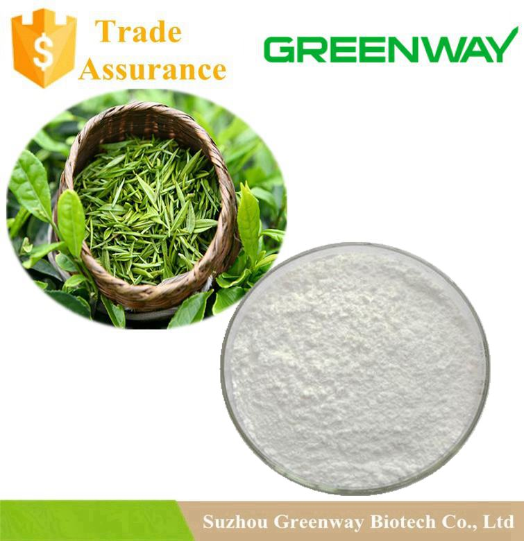 Pure Natural 98% Green Tea Extract Polyphenols Egcg Epigallocatechin Gallate Powder
