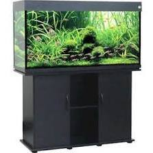 Penn_Plax LLA9BL Delta Queen V 75 Gallon Rectangular Fish Tank