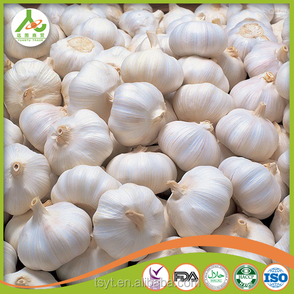 frozen 5cm 5.5cm 6cm 6.5cm 7.0cm Pizhou JINXIANG China Chinese normal cheap white pure snow white garlic manufacture exporter