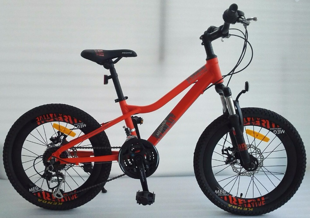Aurora 20'' alloy frame student mountain bike