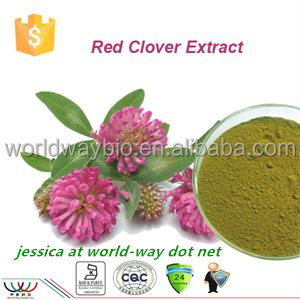 Free sample ! China bulk Red Clover P.E. HPLC 8%,20%,40% isoflavones red clover extract