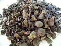 Palm Kernel Shell PKS from indonesia