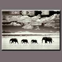 Wild Animal African Elephant Pictures animals stereo picture to 3D effect( elephant )